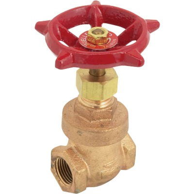 ProLine 2 In. FIPS x 2 In. FIPS Forged Brass Aluminum Gate Valve