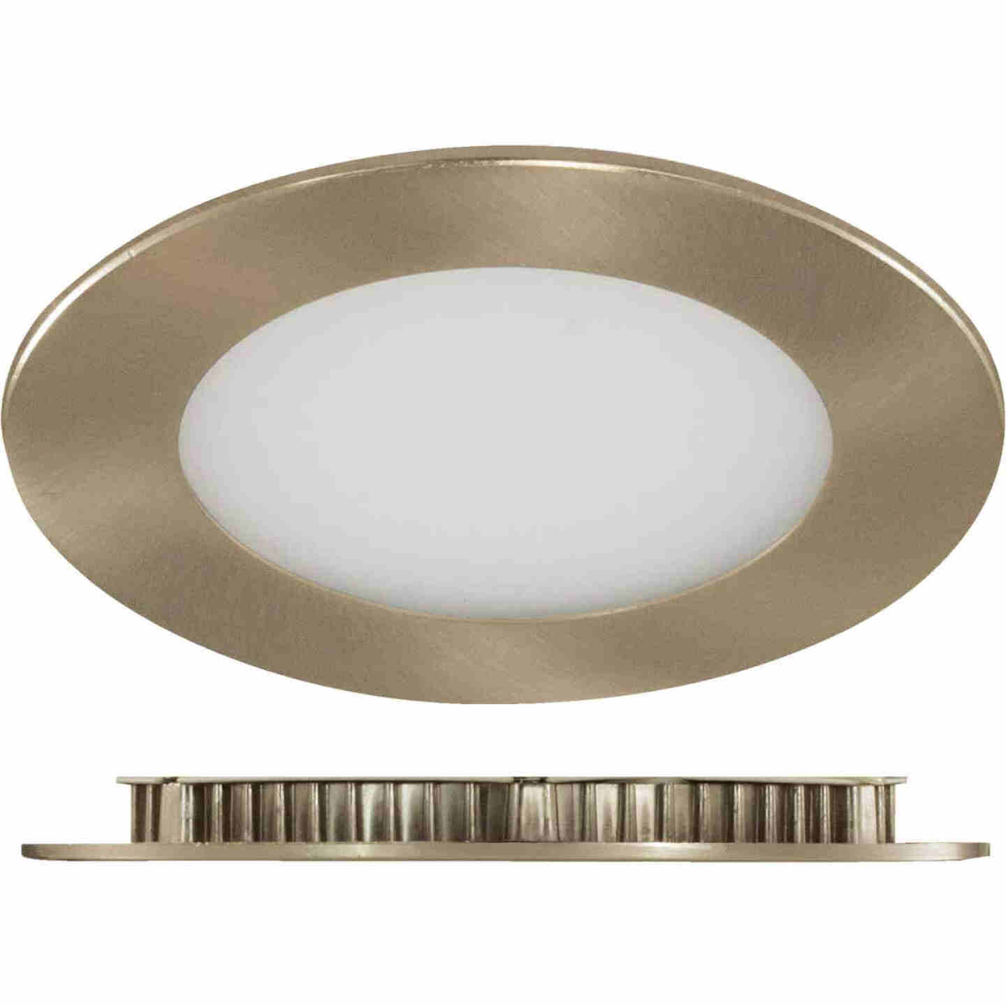 Liteline Trenz ThinLED 4 In. New Construction/Remodel IC Rated Brushed Nickel 650 Lm. 4000K Recessed Light Kit Image 1