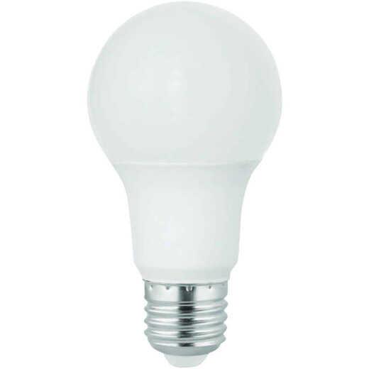 Satco 60W Equivalent Warm White A19 Medium LED Light Bulb (10-Pack)