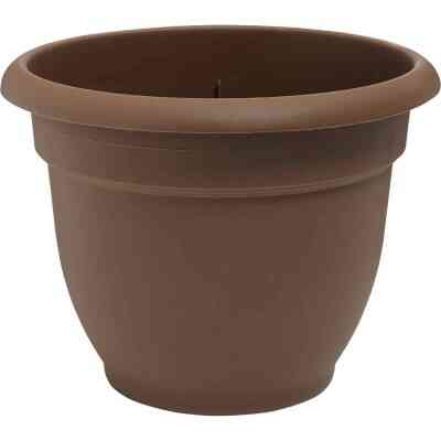 Bloem Ariana 8.8 In. H x 8 In. Dia. Plastic Self Watering Chocolate Planter