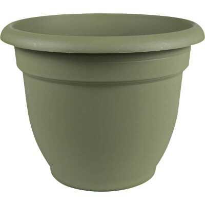 Bloem Ariana 10 In. Plastic Self Watering Thyme Green Planter