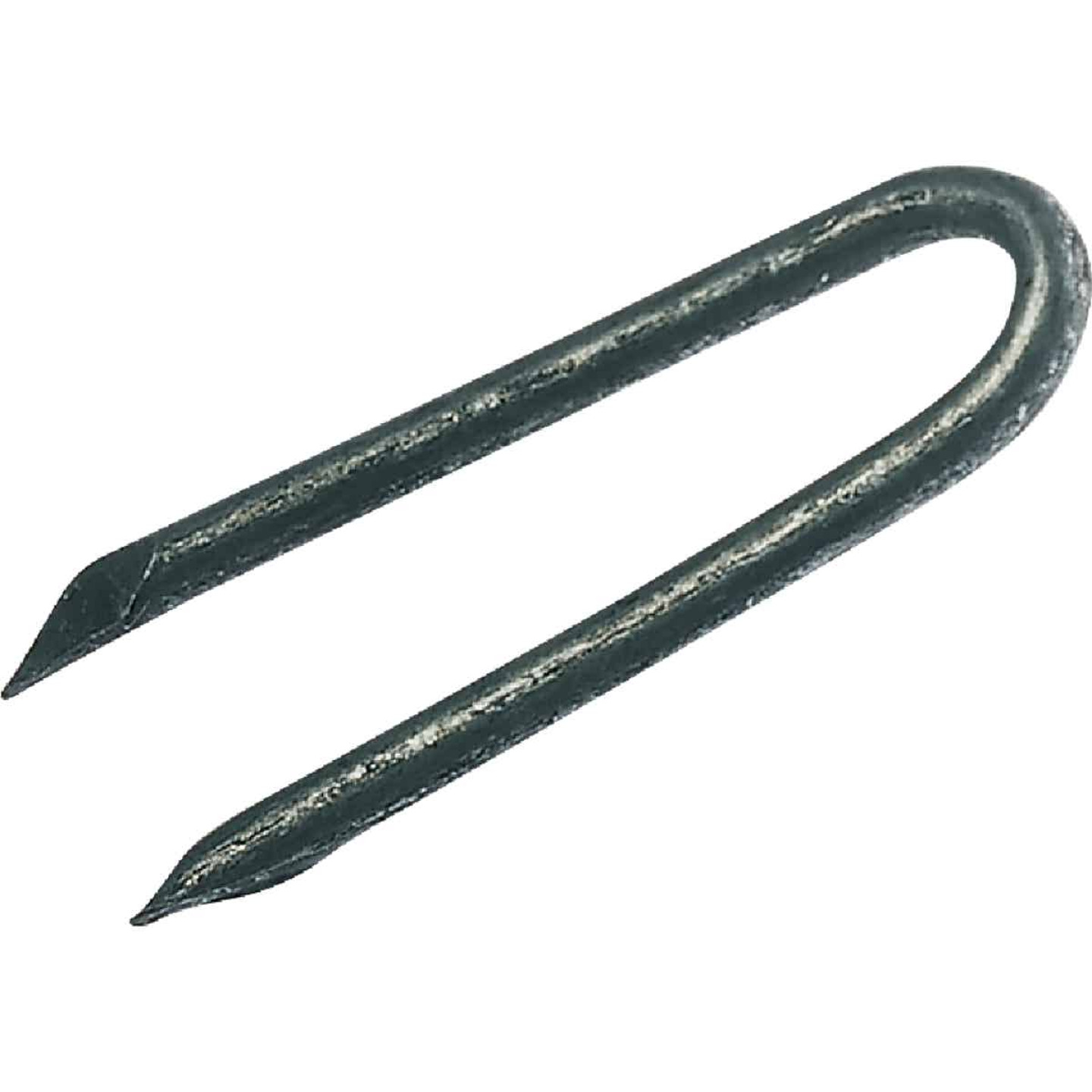 Grip-Rite 1-1/2 In. 9 ga Hot Galvanized Fence Staple (3600 Ct., 50 Lb.) Image 1