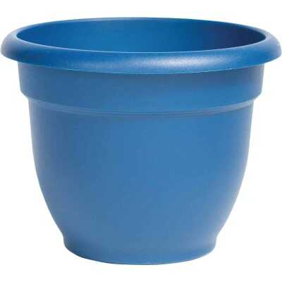 Bloem Ariana 12 In. Plastic Self Watering Classic Blue Planter